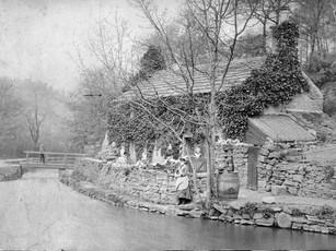 The Eaton family. Circa 1895