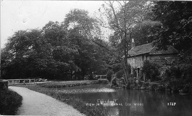 2920 Aq cottage.jpg