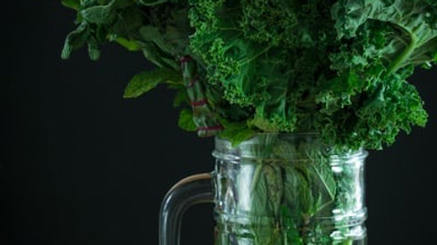 Detox your Body and boost your Immune System