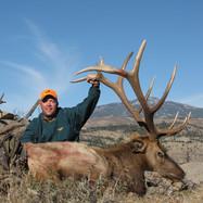 Elk (196).JPG