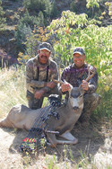 Deer (305).jpg