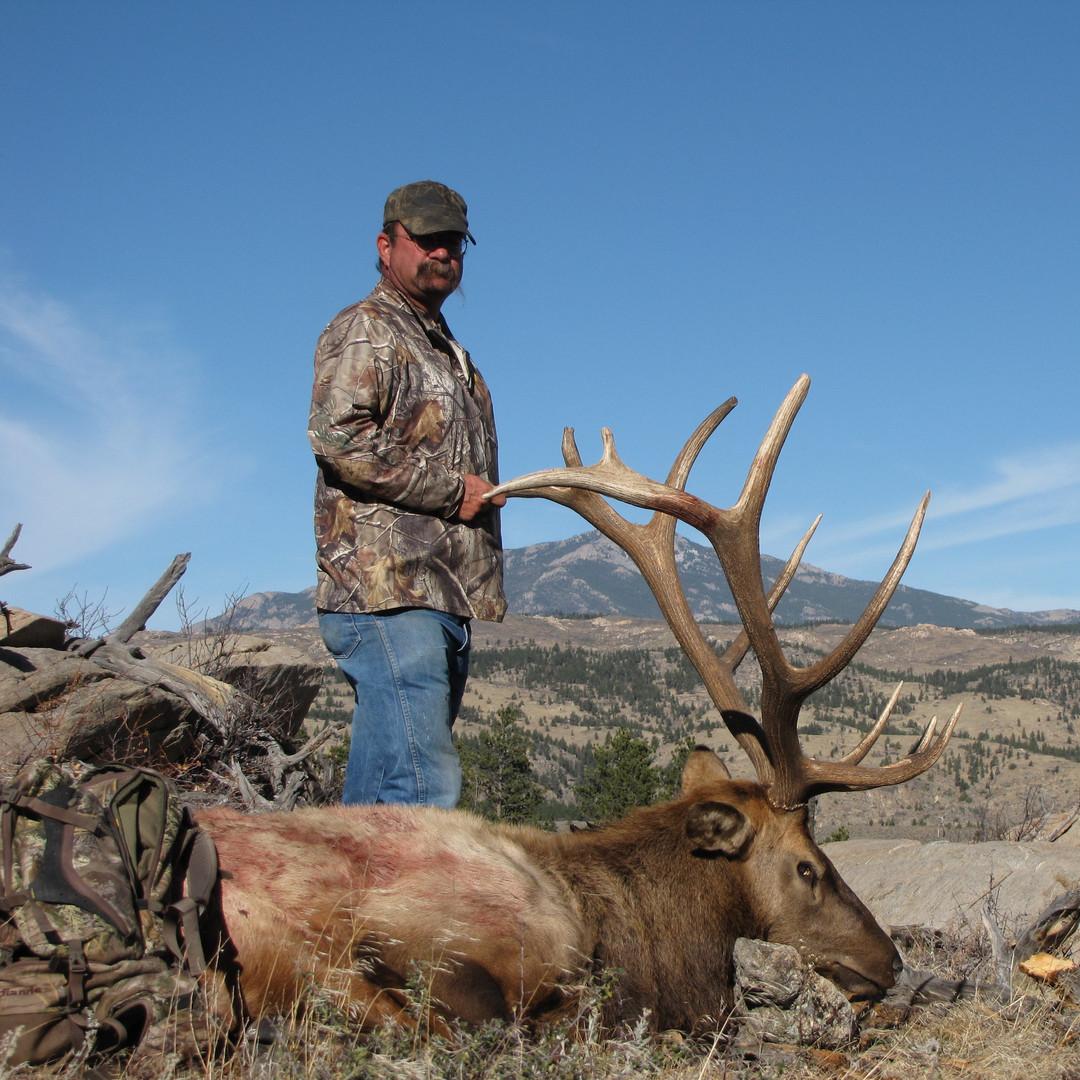 Elk (193).JPG