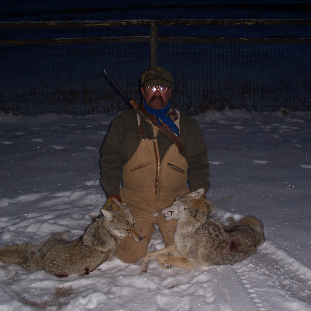 Deer (178).jpg
