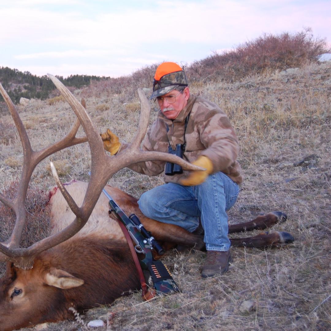 Elk (141).jpg
