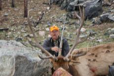Elk Huntign