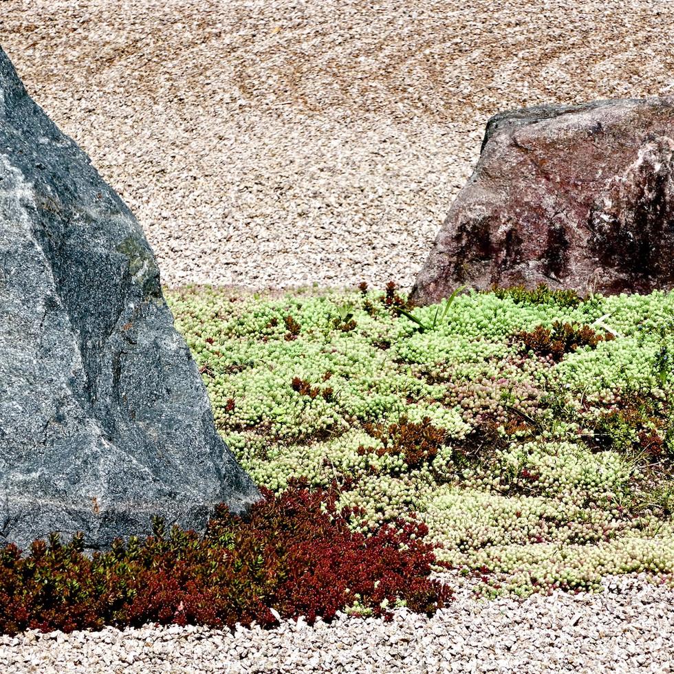277 Japanese Garden France 118.jpg