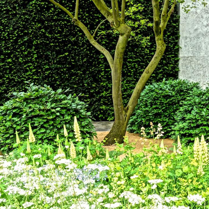 Garden Detail (1).jpg