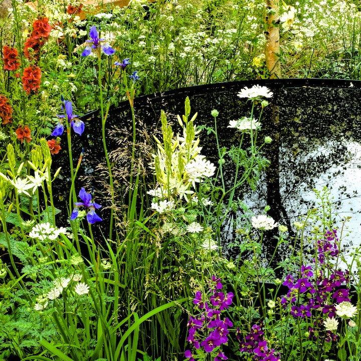 Garden Detail (3).jpg