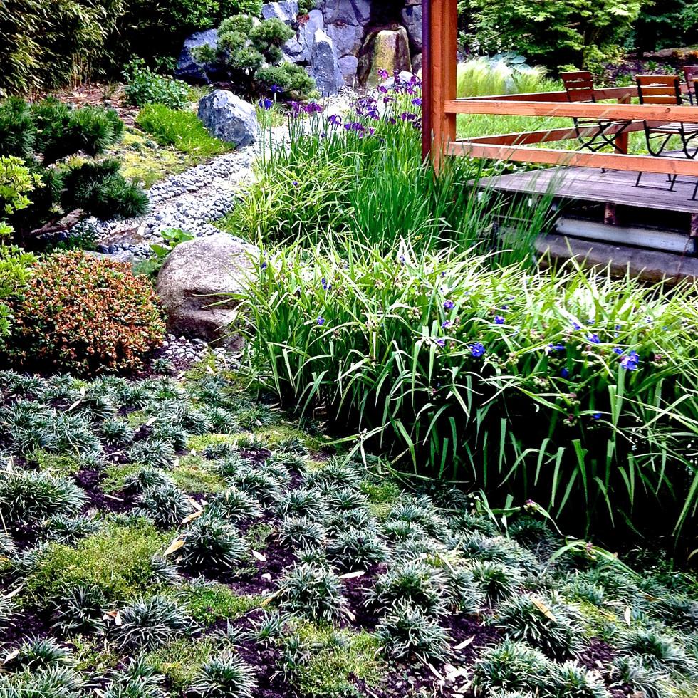 277 Japanese Garden France 116.jpg
