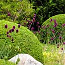 Garden Detail (4).jpg