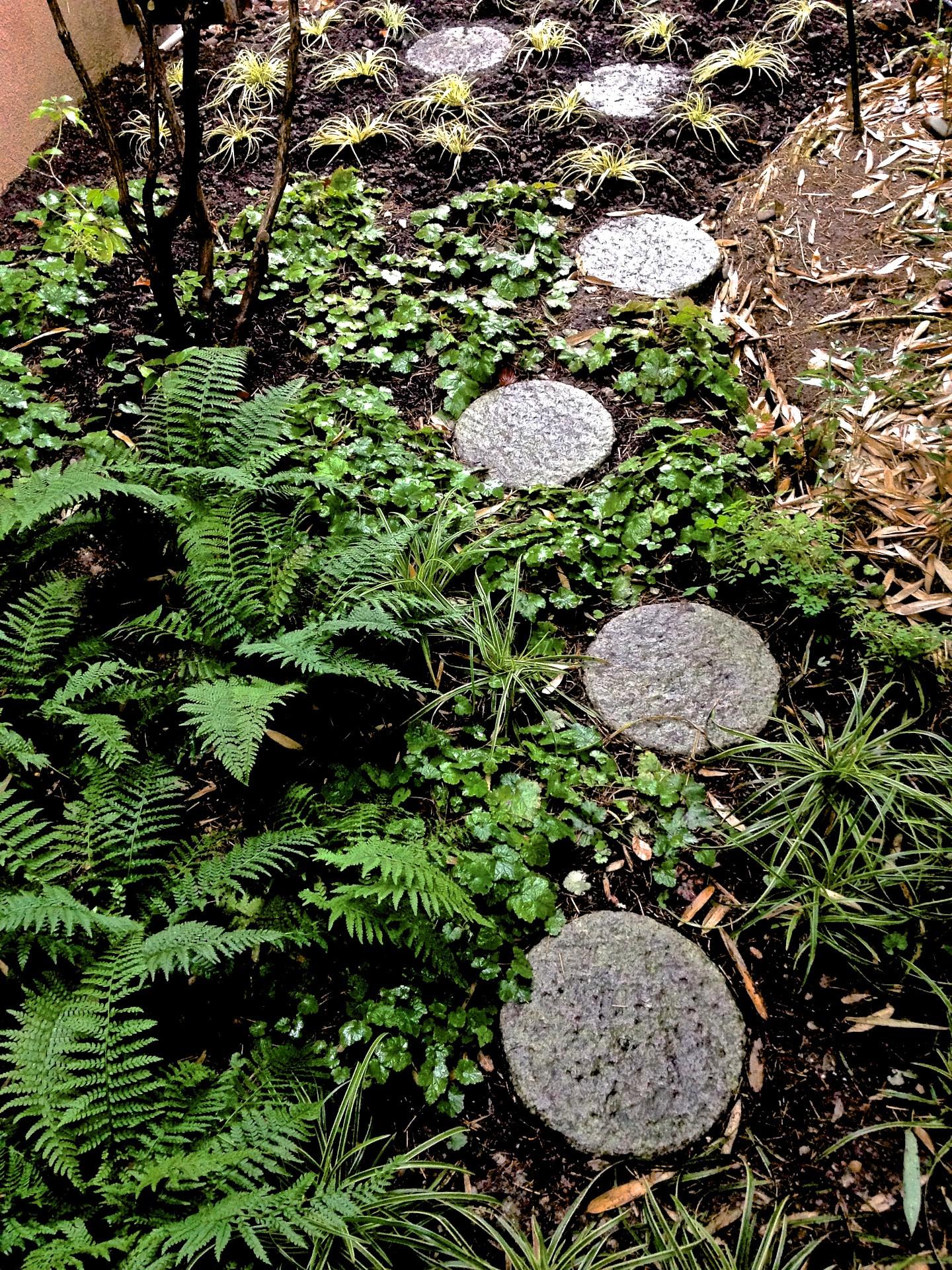 277 Japanese Garden France 115.jpg