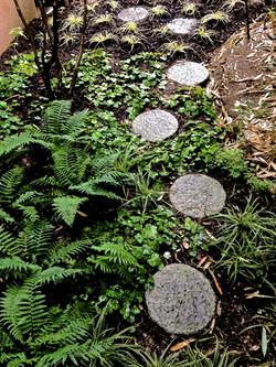 277 Japanese Garden France 115