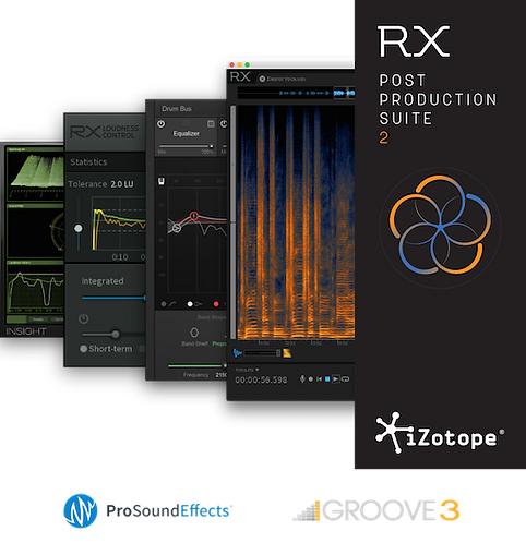 iZOTOPE _RX Post Production Suite 4