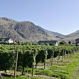 wine tour 8.jpg