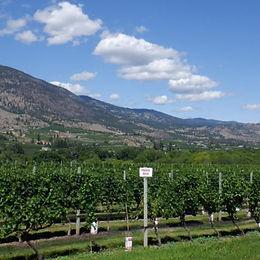 wine tour 14.jpg