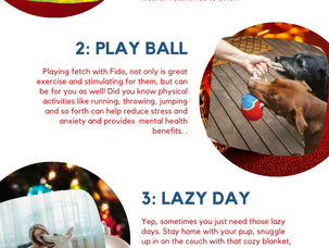 4 Ways to De-Stress With Your Pet This Holiday Season