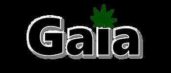 GP_Logo_noBorder.png