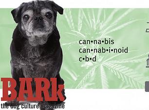 Inaugural Interdisciplinary Cannabis Sym