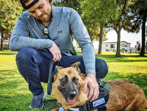 Hounds & Heroes: Improving The Lives of Rescue Pets & Veterans