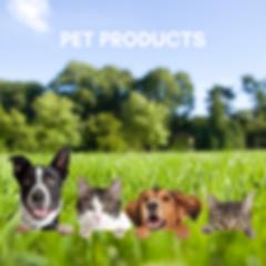 Pet CBD Products