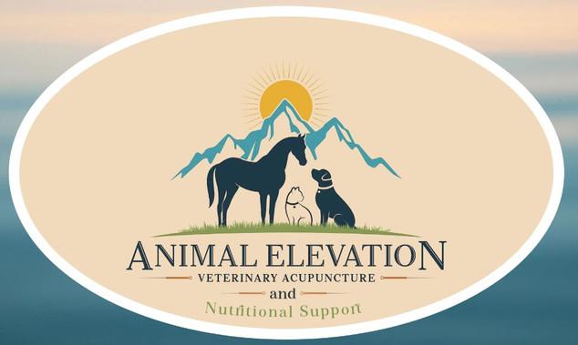 Animal Elevation Veterinary