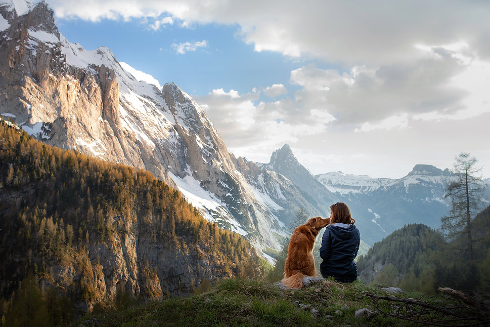 girl with a toller dog in the mountains.