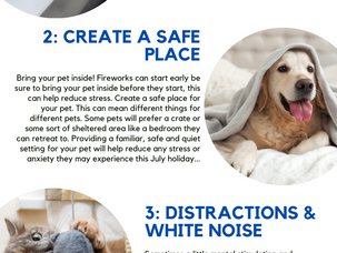 Top 4 Safety Tips For Your Pet This 4th of July