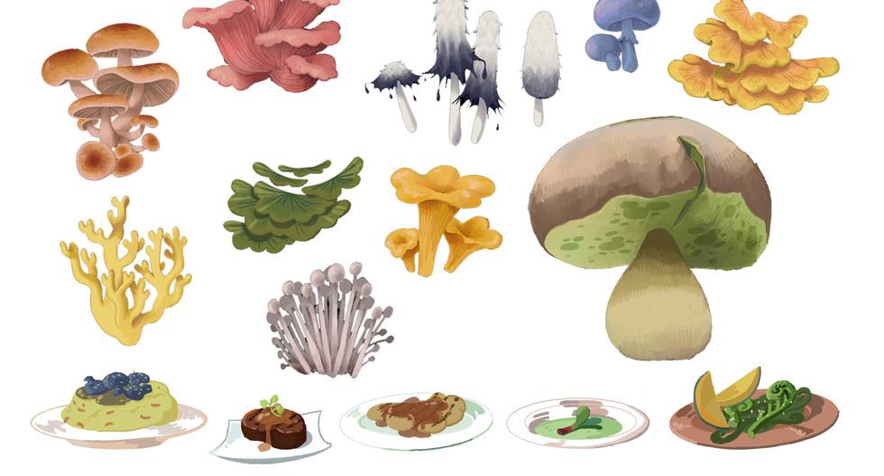 Mushrooms and Food Props