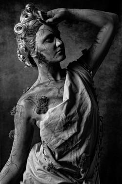 Statuesque 12x8