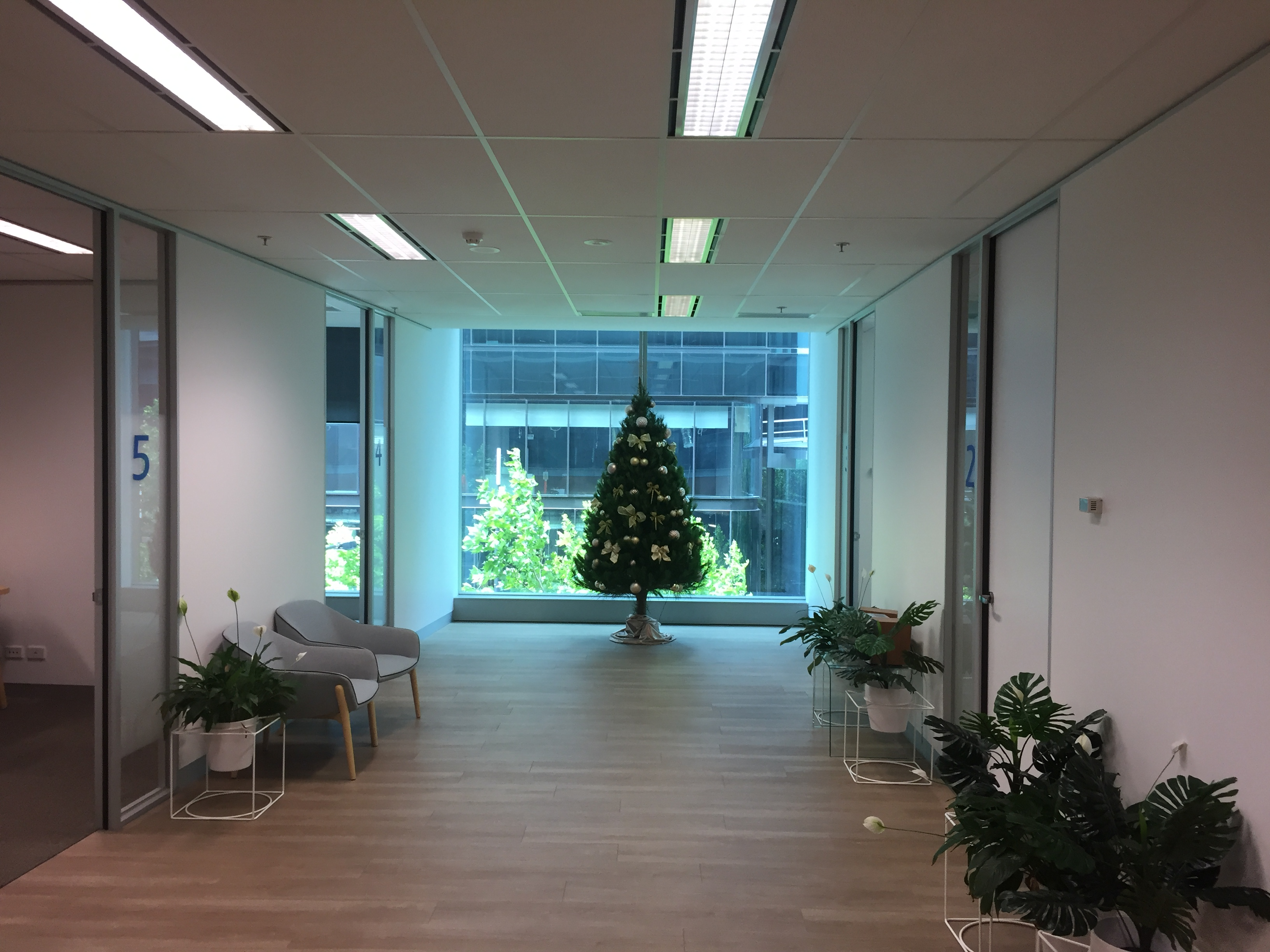6' Decorated Christmas Tree Package