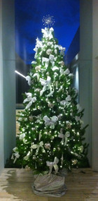 Decorated%20Christmas%20Tree%20Delivery_
