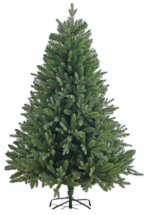 SAGE TREE (2.1m)