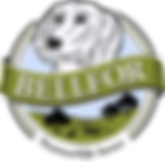 Bellfor_logo_nl_edited.png