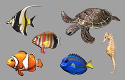 3DFish.jpg