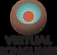 VS-logo_V_wht.png
