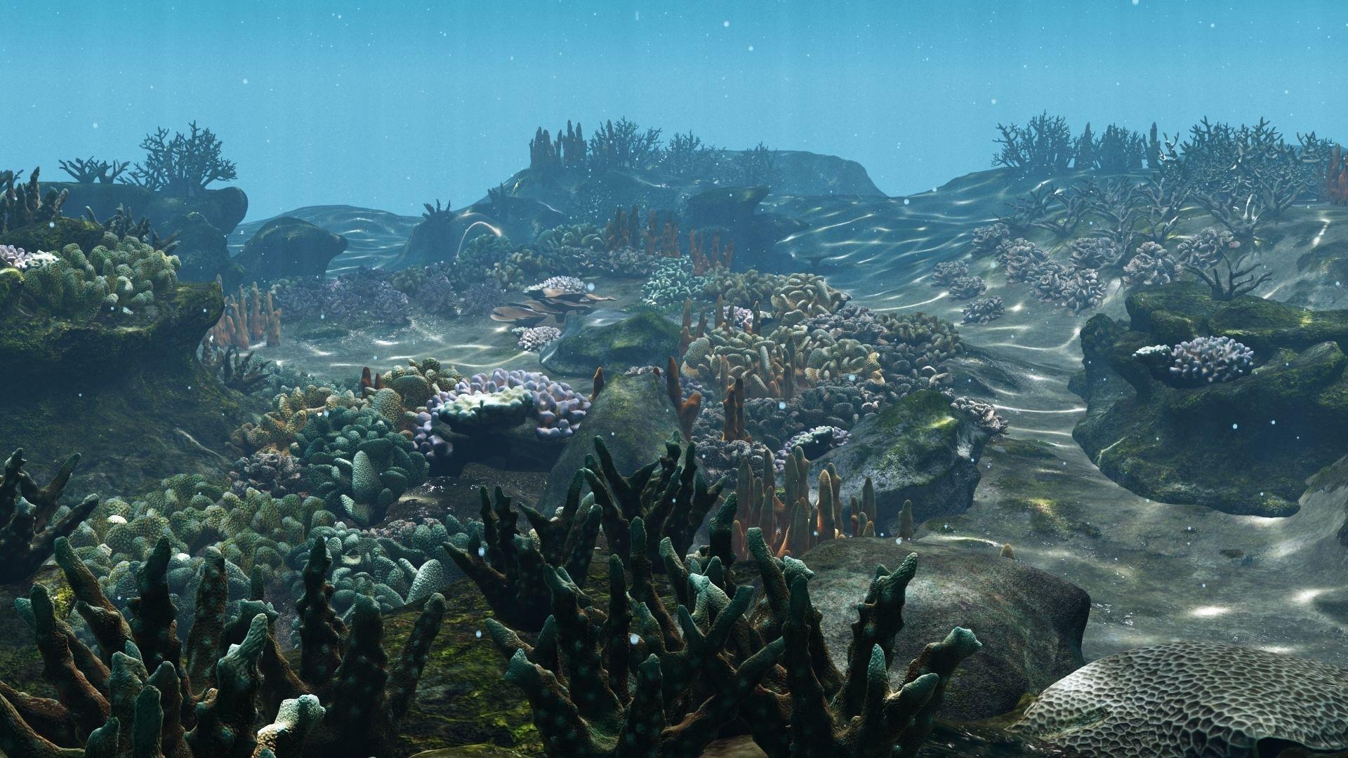 Underwater-Coral-Reef-Habitat.jpg