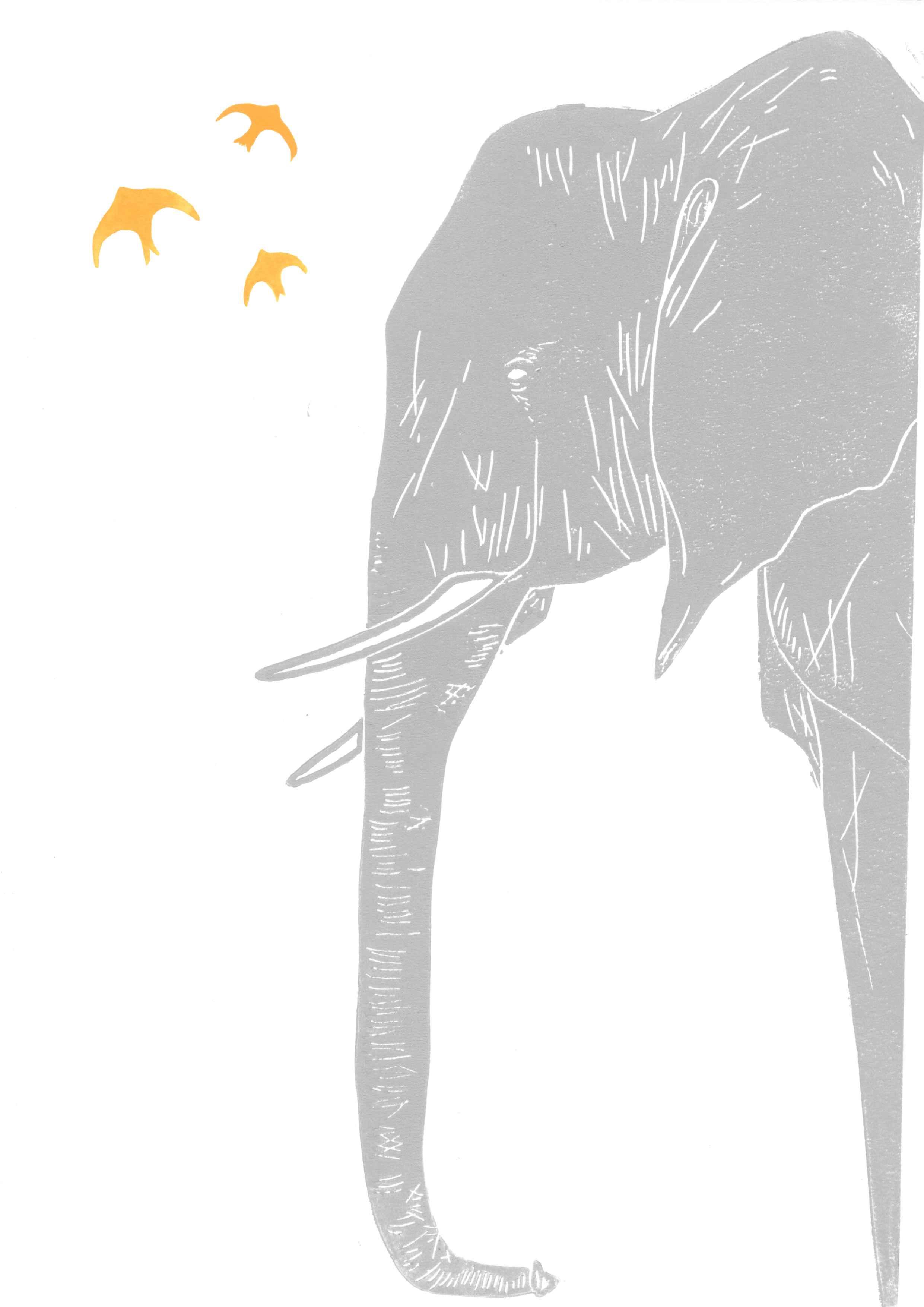 Elephant & Birds