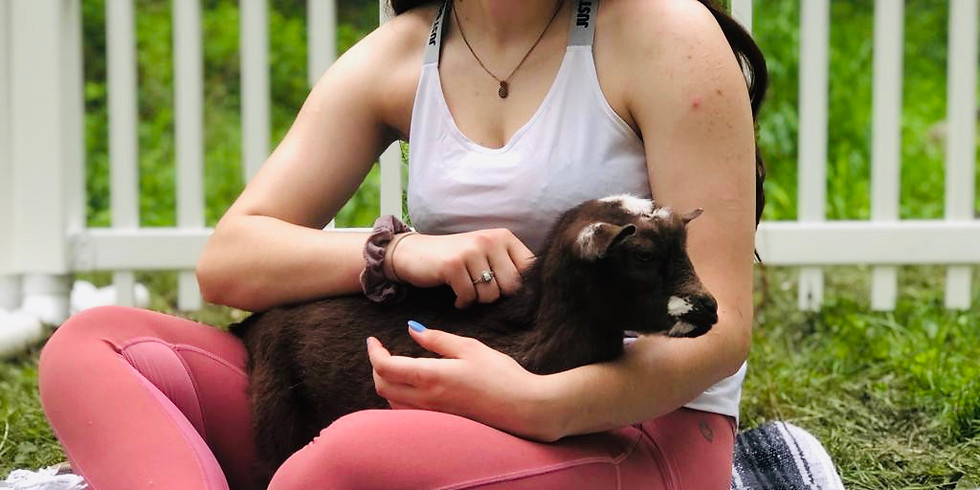 Baby Goat Yoga & Wine Tasting - SOLD OUT
