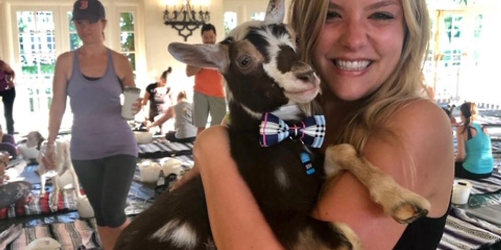 Baby Goat Yoga & Wine Tasting  (4:30pm class)