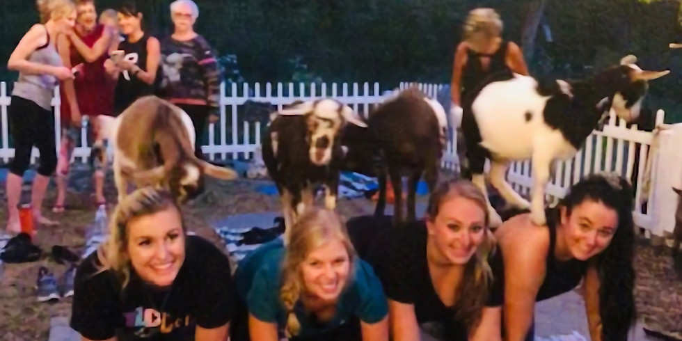 Goat Yoga Under the Stars - Ghouls Night Out