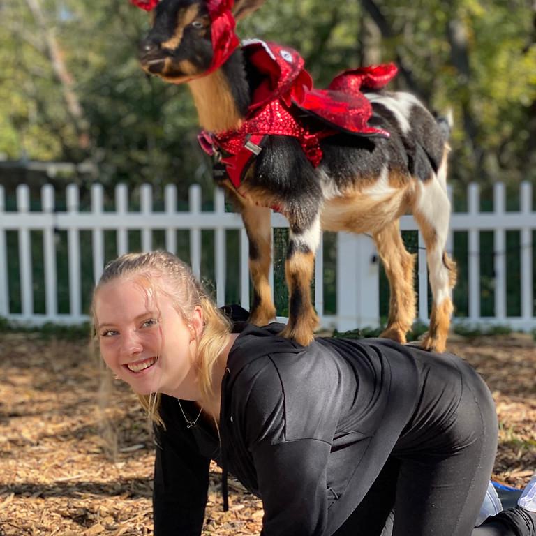 Halloween Goat Yoga & Goat Fun!
