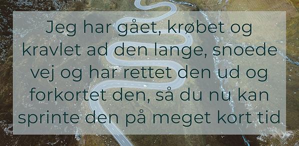 MEME-Den_snoede_vej-B1500px.jpg