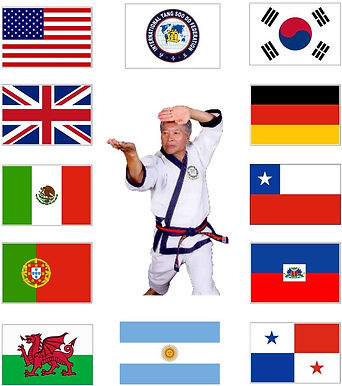 Dad Flags 2.jpg
