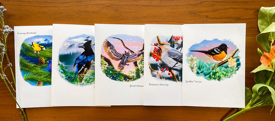 Birds of the Rocky Mountains Card Collection (Set of 5 Cards with Envelopes)