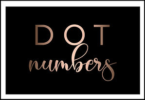DOT Numbers Low Cost Cheap Same Day