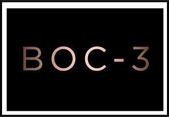 BOC-3, DOT BOC3,