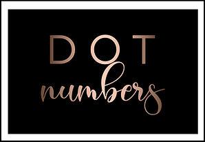 DOT Number Name Change, Cambio de nombre del número DOT