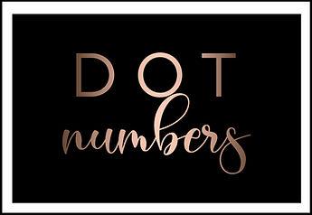 dot number,how to get a dot number, apply for dot numberer,