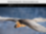 Bildschirmfoto 2020-07-13 um 19.52.18.pn