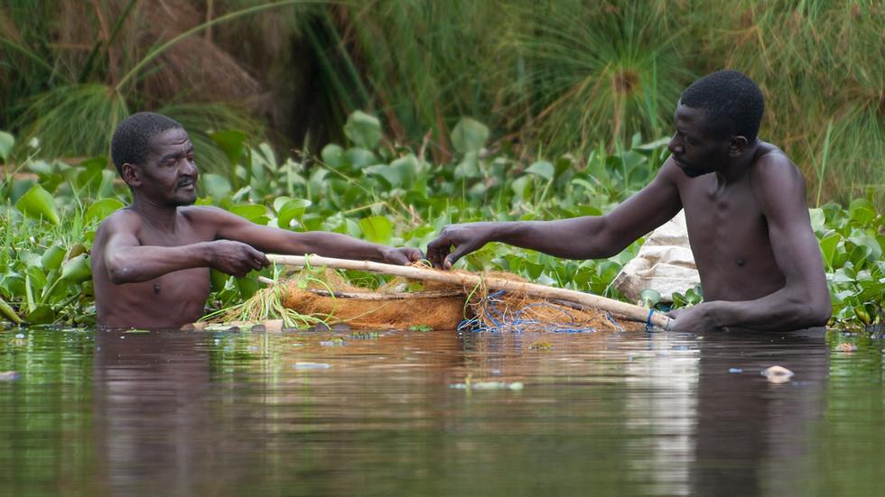 Fischer am Lake Naivasha, Kenia